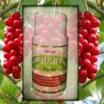 Капките Алковитал съдържат уникални билки и помагат при алкохолна зависимост