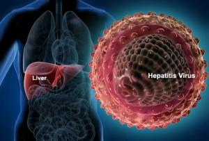 хепатит вирус