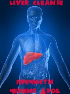 liver copy